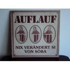 AUFLAUF - Nix verändert si von söba